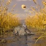 C4D模型-C4D水稻稻田中的小猫 草帽三维场景模型含材质贴图